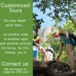 Customized Tours - Om Yoga Nature Spain